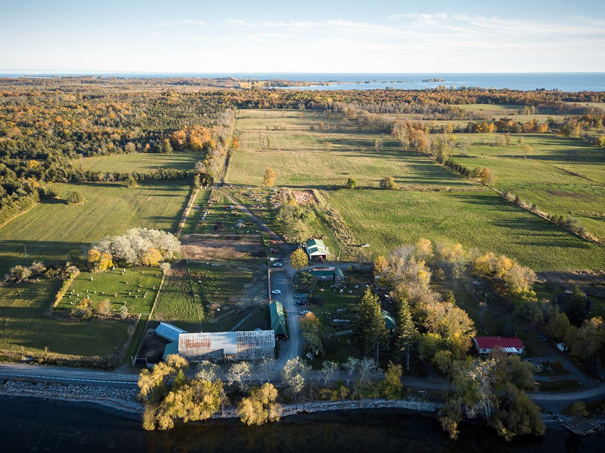 Topsy Farms as viewed from the air