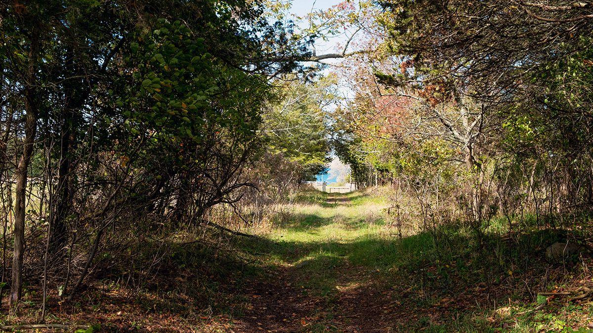 A walking trail at Topsy Farms