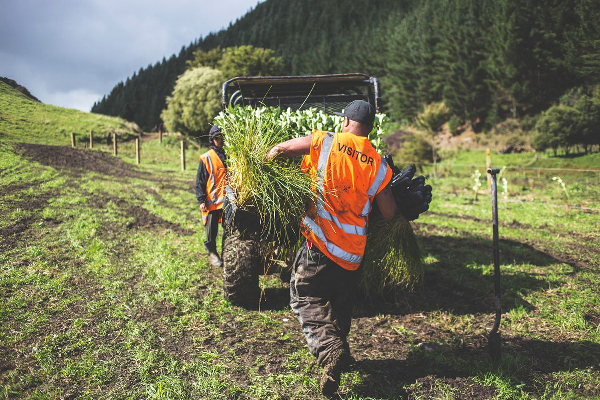Two people standing at a vehicle on a field outdoors, with a forest in the background. One person is unloading plants.