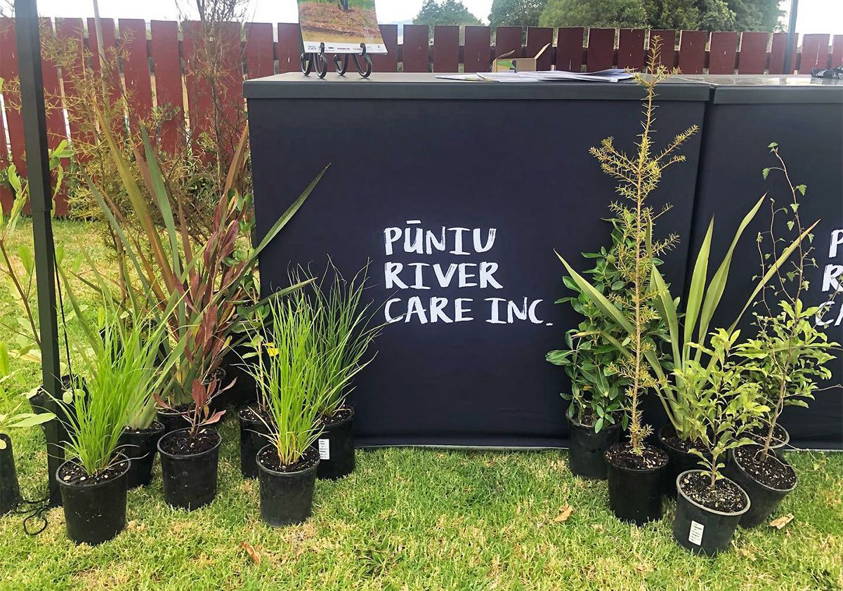 """Various tree seedlings in pots on display in front of an outdoor information booth labelled """"Pūniu River Care""""."""