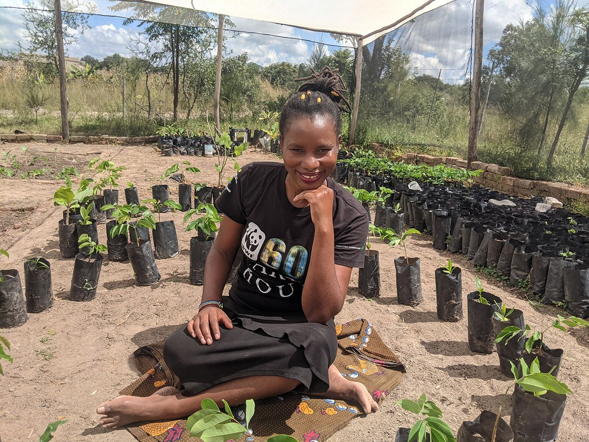 A woman, Shamiso Mupara, sitting on the ground in a large tent surrounded by seedlings in pots.